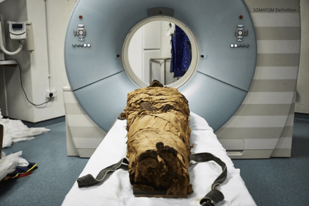 A 3000 year-old mummy is placed in a CT-scanner, in order to measure his vocal tract.